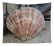 Brown Cockle Shell And Driftwood 2 Tapestry