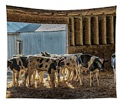Calves Tapestry