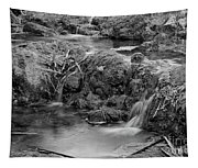 Cascades In A Peaceful Creek Scenery Tapestry