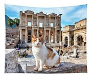 Cat In Front Of The Library Of Celsus Tapestry