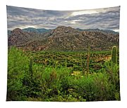 Catalina Foothills H1130 Tapestry