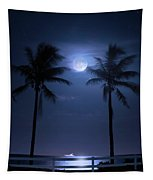 Catch The Moon Tapestry