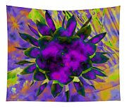Cereusly Solarized Tapestry