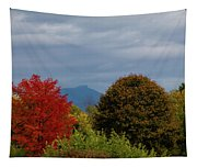 Charlotte Vermont View Of Camels Hump Tapestry