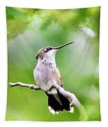Charming Hummingbird Square Tapestry