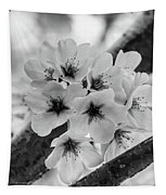 Cherry Blossoms 2019 E Tapestry