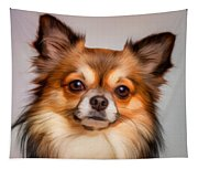 Chihuahua Dog Portrait Tapestry