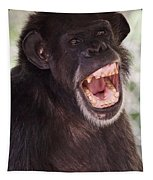 Chimp With Mouth Open Tapestry