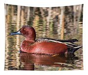 Cinnamon Teal On The Pond Tapestry