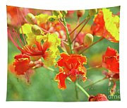 Colorful Morning Tapestry