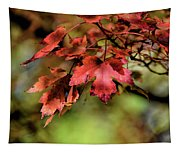 Colours Turning Tapestry