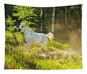 Coming Through The Dust Tapestry