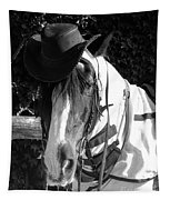 Cool Gypsy Horse Tapestry