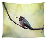 Costa's Humminbird On A Branch  Tapestry
