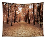 Covered Path Tapestry