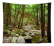 Creek In Massachusetts 2 Tapestry