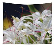 Crinum Lily Closeup Tapestry