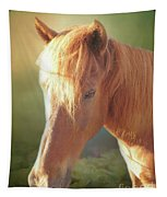 Cute Chestnut Pony Tapestry