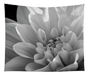Dahlia In Monochrome Tapestry