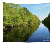 Dismal Swamp Canal In Spring Tapestry