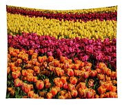 Dreaming Of Endless Colorful Tulips Tapestry