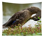 Duck 3 Tapestry