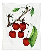 Early Richmond Cherries Tapestry