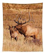 Elk And Mate In Rocky Mountain Meadow Tapestry