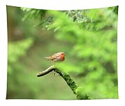 English Robin Erithacus Rubecula Tapestry