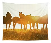 Equine Glow Tapestry