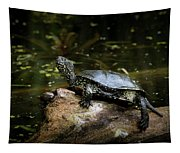 European Pond Turtle Sitting On A Trunk In A Pond Tapestry