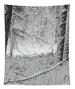Evening Snow Tapestry