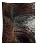 Eye Of A Horse  Tapestry by Shelli Fitzpatrick