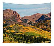 Fall Colors On The North Face Of Pikes Peak Tapestry