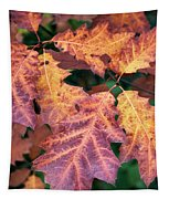 Fall Flames Tapestry by Whitney Goodey