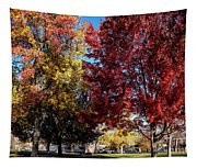 Fall In Wenatchee Tapestry