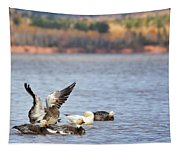 Fall Migration At Whittlesey Creek Tapestry