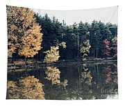 Fall Mirrors 2 Tapestry