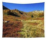 Fall On The Mountains Tapestry