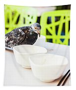 Fast Food Asian Pigeon Tapestry