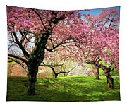 Cherry Orchard Afternoon Tapestry