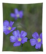 Flax Wildflowers Tapestry
