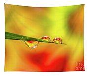 Flower In Water Droplet Tapestry