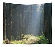 Forrest And Sun Tapestry