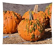 Fresh Butternut Pumpkins Tapestry
