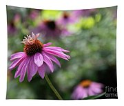 Frilly Hat Echinacea Tapestry