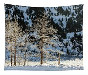 Frost Covered Trees On The Portage Glacier Highway Alaska Tapestry