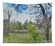 Ghost Town Kansas Tapestry