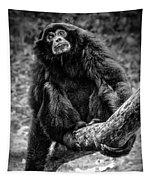 Gibbon Tapestry