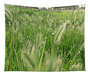 Grass Seeds The  Paddock Tapestry